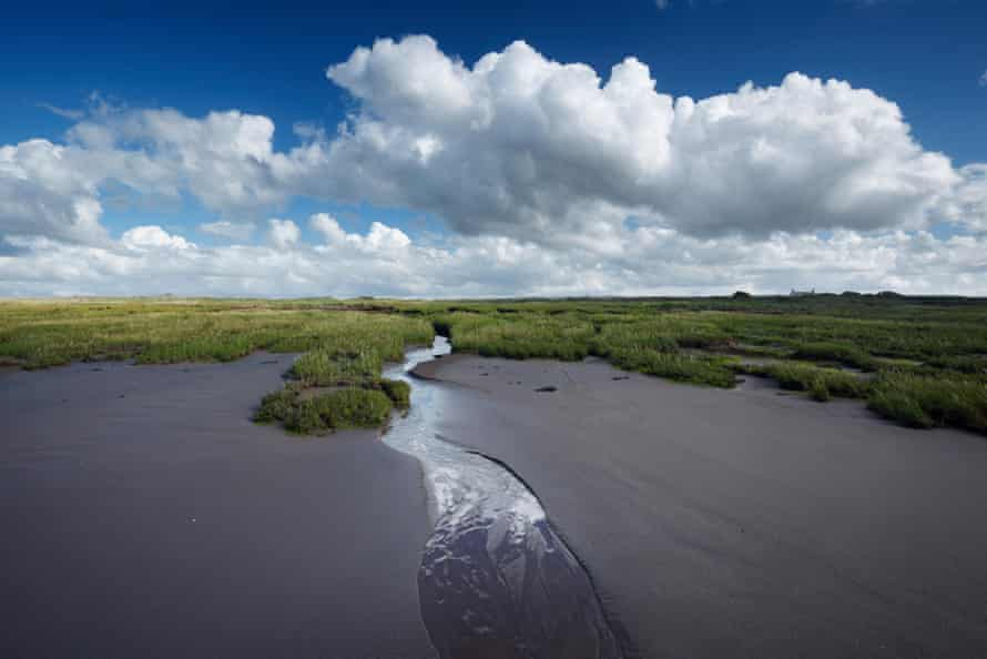 The wetland area at Steart Marshes near Bridgwater in Somerset were set up under the EU's habitats directive