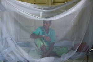 A patient with dengue fever under a mosquito net at a hospital in Dhaka, Bangladesh