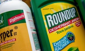 A bottle of Monsanto's Roundup in a gardening store in Lille. France.