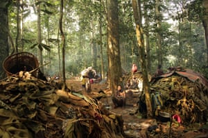 Life in the Sangha forest