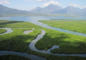 'It's hard to overstate the beauty and wonder of Hinchinbrook Island: there's something Jurassic about it.'