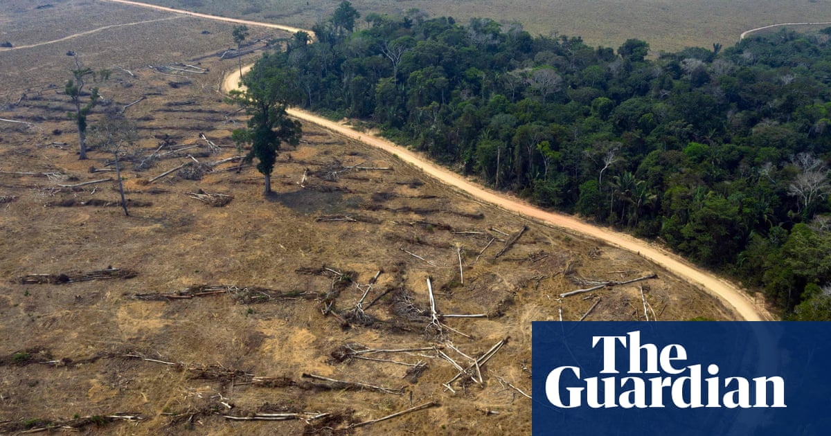Food brands challenge deforestation rules in UK environment bill