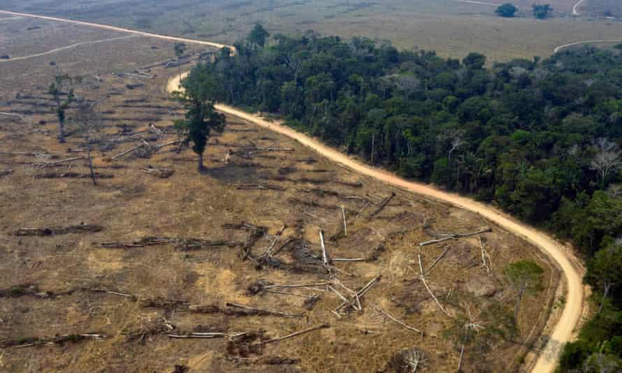 Aerial photo taken of burnt areas of the Amazon rainforest, near Porto Velho, Rondonia state, Brazil.