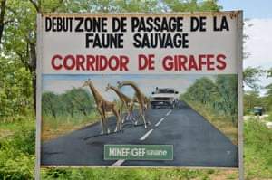 A sign warning of a giraffe corridor near the Benoue national park, Cameroon.