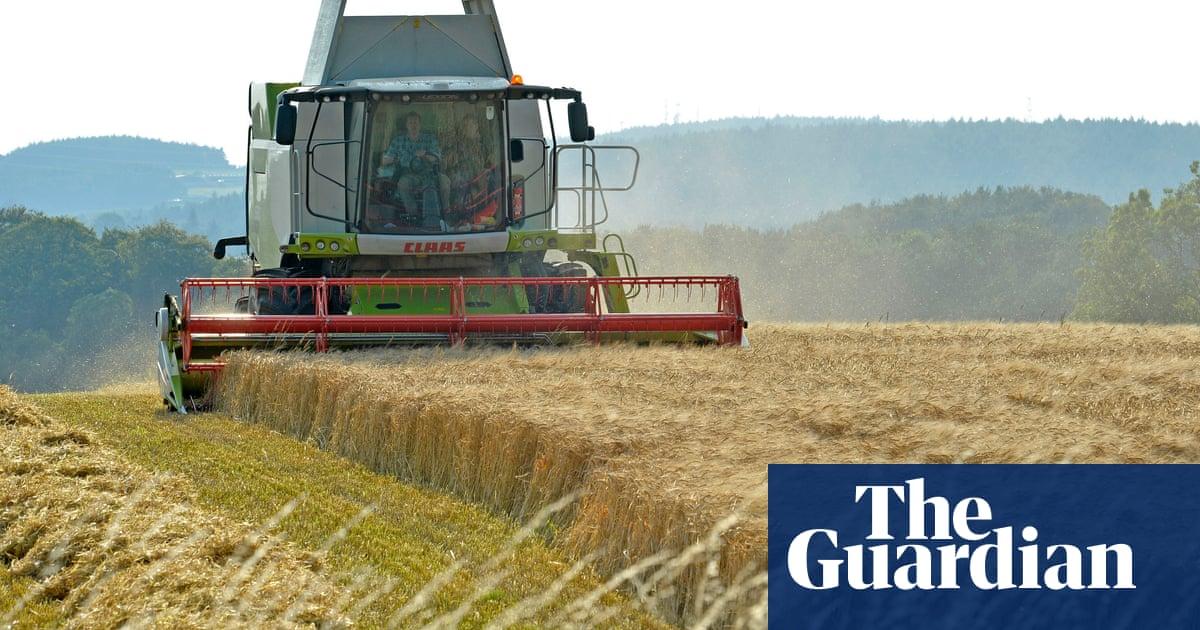Intensive farming v the environment | Letters | Environment