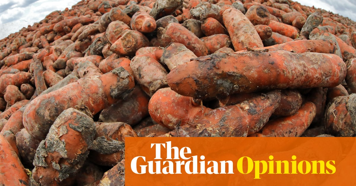 Time to get serious about food waste in fight against global heating - The Guardian