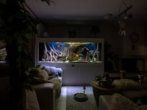 Parallel Universe by Jorritt T Hoen (Netherlands)Shortlist. Inspired by the great explorers and expeditions of the past, these images show exotic habitats from faraway corners of the world set up inside people's living rooms