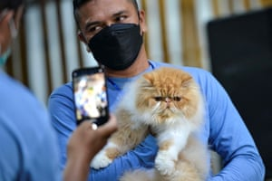 Banda Aceh, Indonesia Participants pose for pictures at cat show