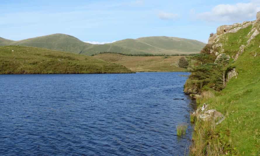 Llyn y Dywarchen, Gwynedd.