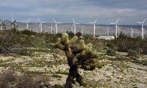 California wind farm