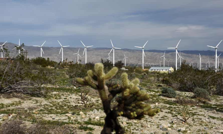 The San Gorgonio wind farm near Rancho Mirage in California. The falling cost of renewables and gas causing coal to be dislodged as a favored energy source for utilities.