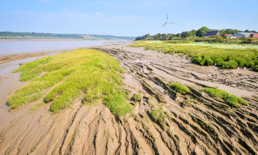 Mud, silt and grass are exposed during low tide on the River Severn at Sharpness.