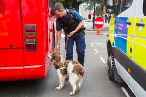 A police officer and his sniffer dog, Bailey, carry out checks on a bus that will take part in the London parade