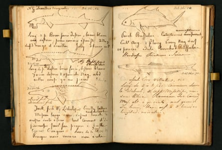 Book 17th of Notes – Travels in 1818 by Constantine Samuel Rafinesque.