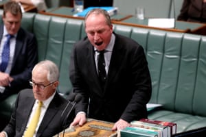 Deputy PM Barnaby Joyce during question time.