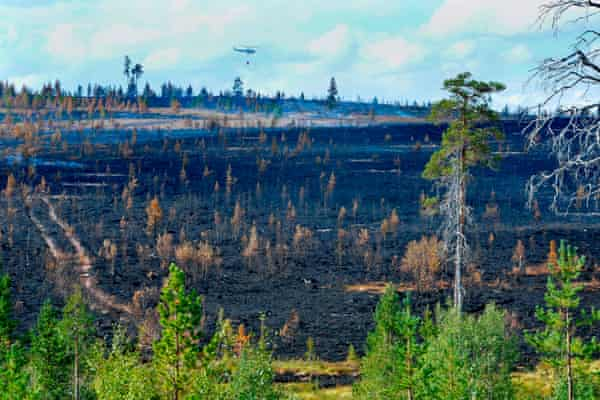 A forest fire burns near Sarna in central Sweden on July 26, 2018.