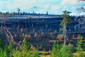 A forest fire burns near Sarna in central Sweden in July 2018.