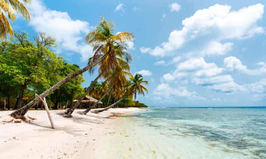 Mustique beach with white sand and palm trees