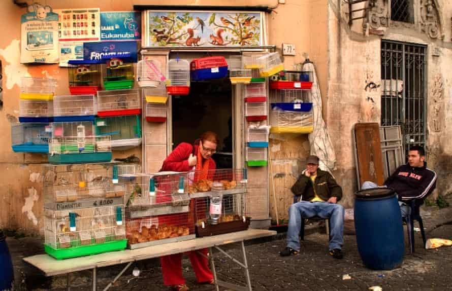 Street scene outside a pet shop in Naples