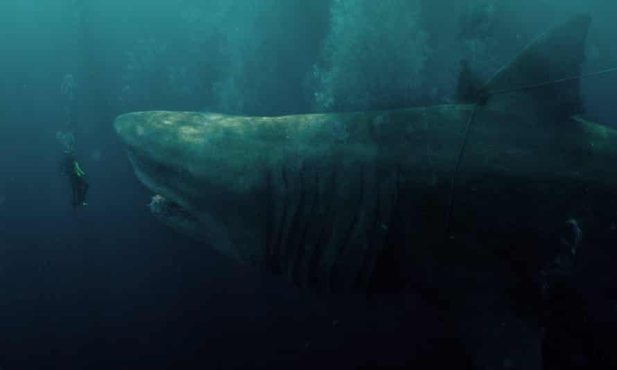 Running deep … The Meg carries warnings about pollution and destruction of marine life.
