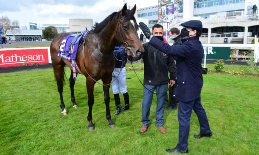 Aidan O'Brien pats Bolshoi Ballet after his colt's victory at Leopardstown Racecourse in April.