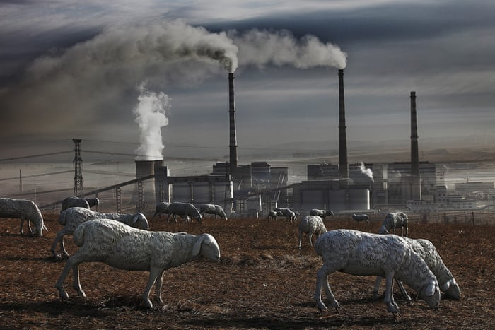 Why factory farming is not just cruel – but also a threat to