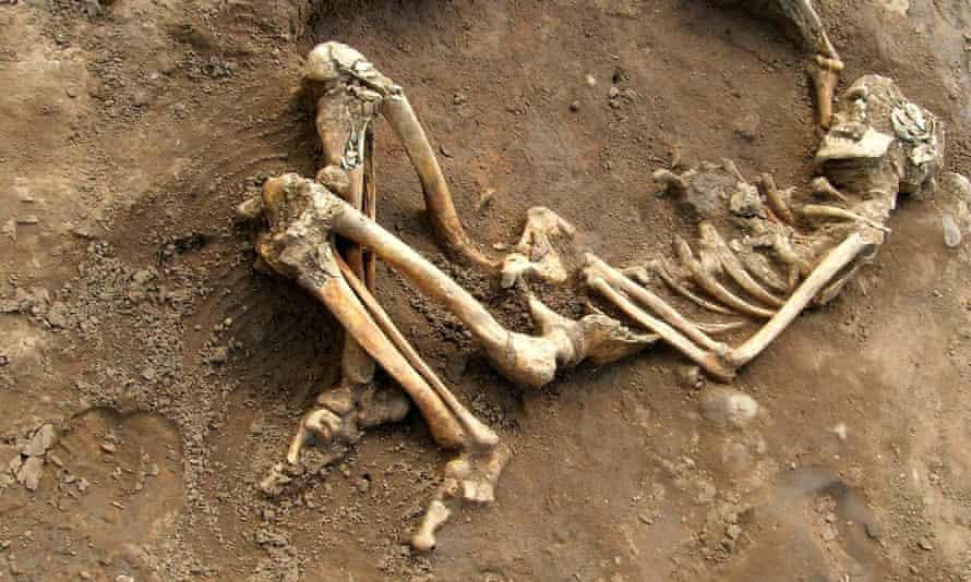The stories of Roman lives are written their bones: Roman skeleton found on at York University campus.