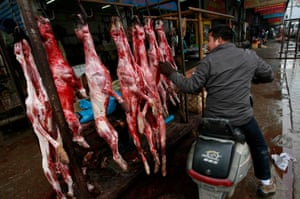 Dog meat has long been a popular delicacy in China, but attitudes are shifting.