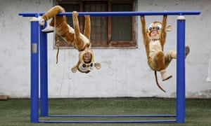 """Children wearing monkey costumes play before a performance of """"Shehuo"""" festival, ahead of Chinese Lunar New Year, in Hancheng, Shaanxi Province, China, January 16, 2016."""