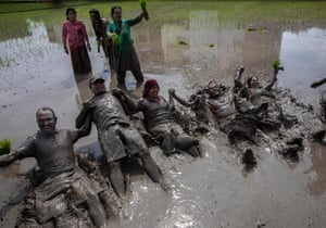People lie in muddy water in a paddy field