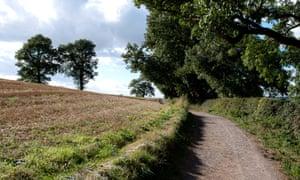 Bosworth Battlefield walk
