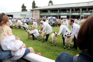 Exhibitors at the 100th Royal Welsh Show