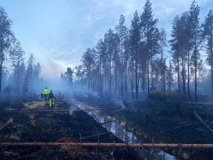 firefighters in a forest amid smoke and scorched earth