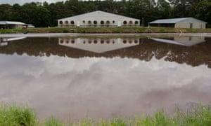 Hog waste is pumped into a lagoon near Wallace, North Carolina.