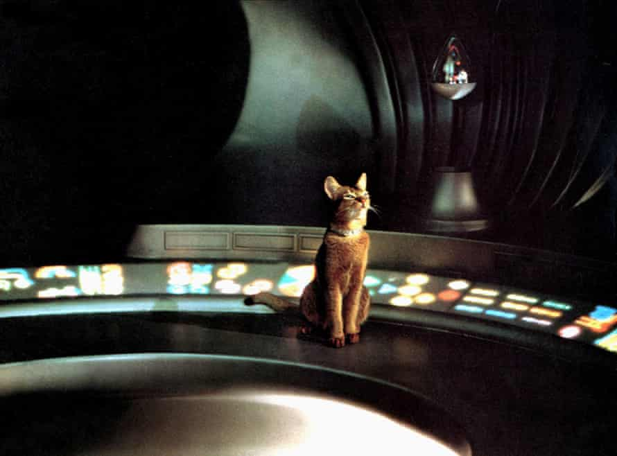 Jake in The Cat from Outer Space.
