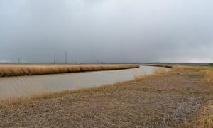 Reeds across the horizon in Haddiscoe.