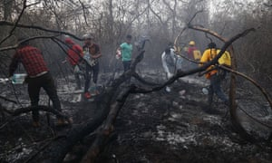 Volunteers work to put out a forest fire in Aguas Calientes, on the outskirts of Robore, Bolivia, 24 August 2019.