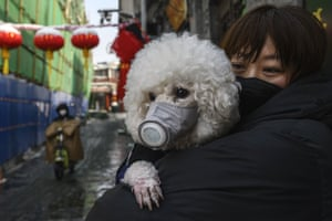 A woman and her dog wear protective masks.