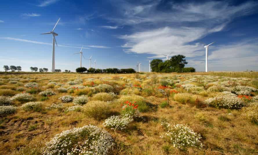 East Somerton wind farm