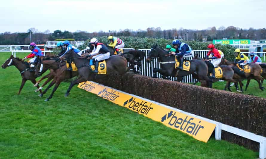 The incident late in the London National at Sandown on 7 December took place '12 minutes before sunset on an extremely murky day', the panel's chairman said.