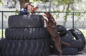 Florida, USMiami-Dade emergency worker Maggie Castro is found by Zeus a chocolate Labrador while hiding in a stack of tires during an urban search and rescue demonstration.