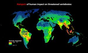 Hotspots map