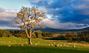 Glen Cassley in Scotland