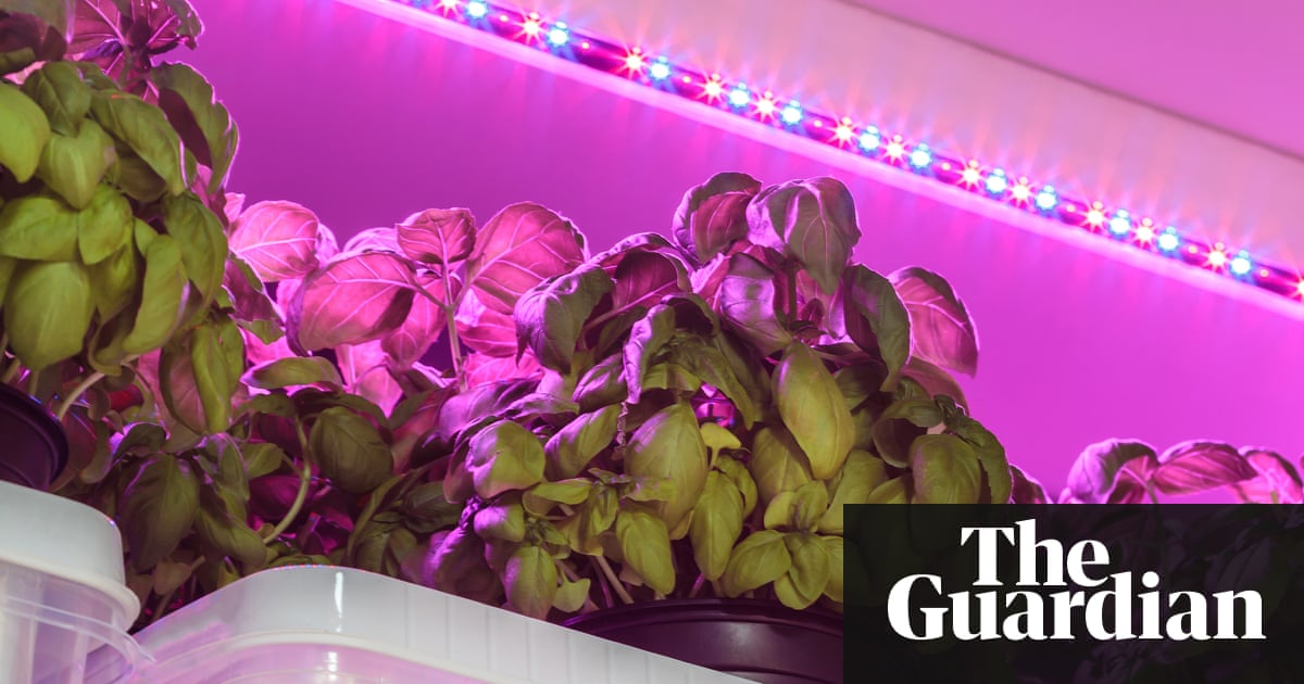 indoor led growing ip re hydroponic lighting for and grow plants lights light bulb plant greenhouse oxyled