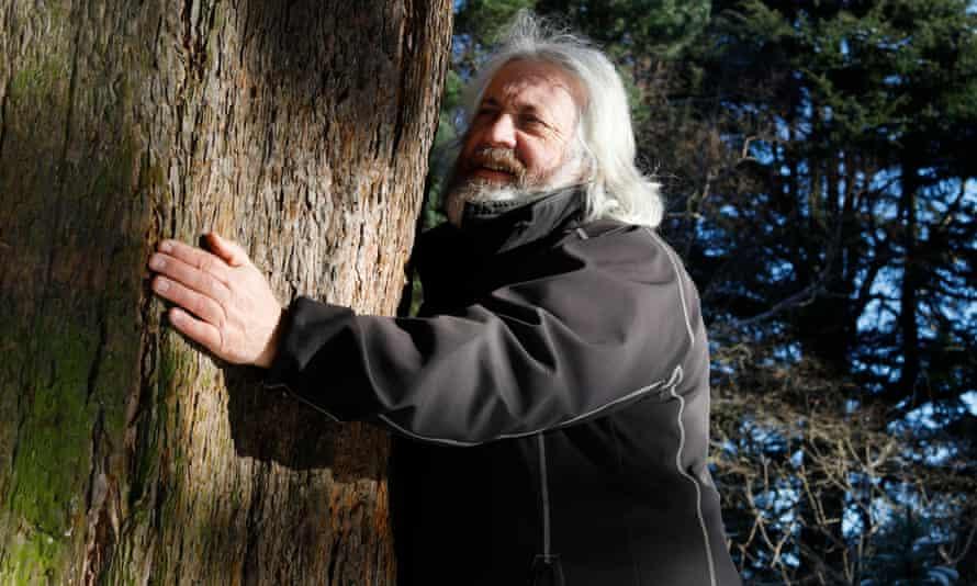 David Knott hugging a sequoia tree
