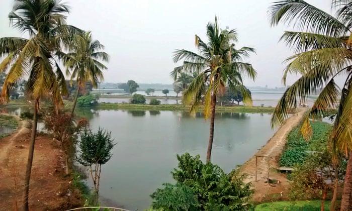 The miracle of Kolkata's wetlands – and one man's struggle