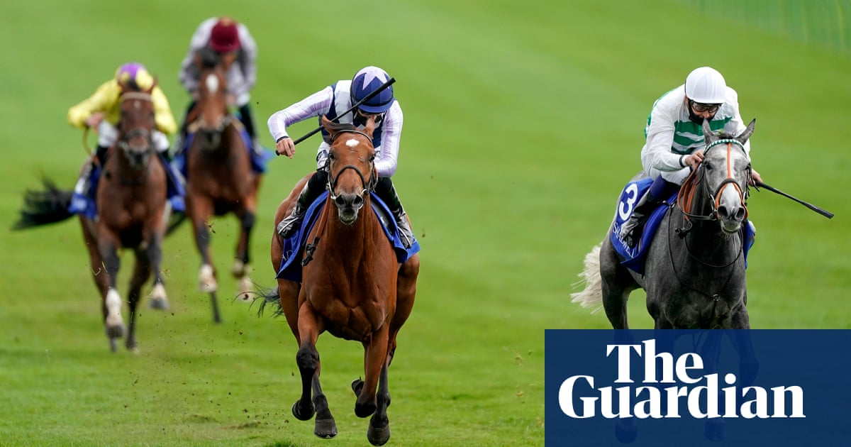 Racing could lose 10% of its trainers, warns next federation chief