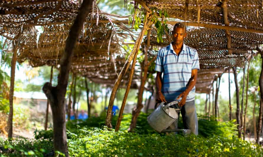 Timberland has enlisted Impact Farming, a US nonprofit, to carry out a feasibility study that will look for ways to farm cotton sustainably in Haiti.