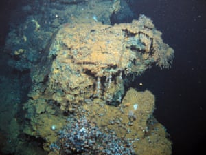 Concentrated patches of life around hydrothermal vents are as densely, if not as diversely, populated as coral reefs. But these rare and vital ecosystems are under serious threat from deep-sea mining for minerals such as zinc, used for car batteries and mobile phone circuit boards, say campaigners.