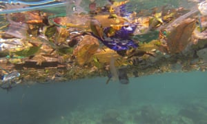 Layers of plastic rubbish found off Christmas Island